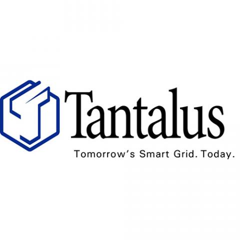https://www.publicpower.org/sites/default/files/styles/square_large_/public/sponsors/logo-tantalus.jpg?itok=gwPtikui