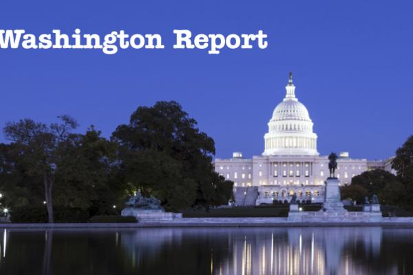 Washington-Report
