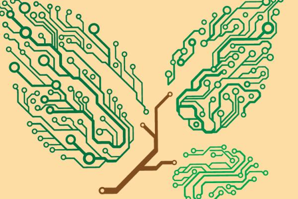 graphic of circuits as a tree branch and leaves